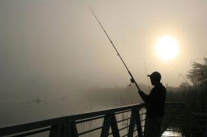 Licencia de pesca en La Rioja